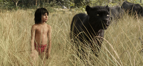 Hiring Lessons from 'The Jungle Book'